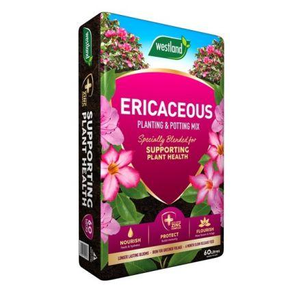 Westland Ericaceous Planting & Potting Compost 60Litre bag